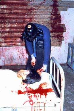 Flower_of_flesh_and_blood_3