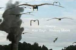 Birdemic: Shock and Terror (2010)