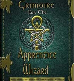Book Review Grimoire For The Apprentice Wizard Author
