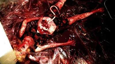 Lucifer Valentine - Interview - Slow Torture Puke Chamber - ReGORGEgitated Sacrifice 2