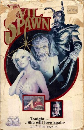 Evil-Spawn-1987-movie-Kenneth-J.-Hall-Ted-Newsom-(10)