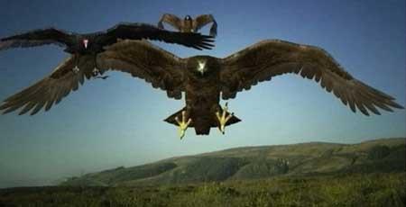 Birdemic_2_The_Resurrection_2013-Movie-4