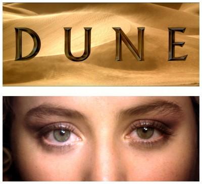 Dune photos 1