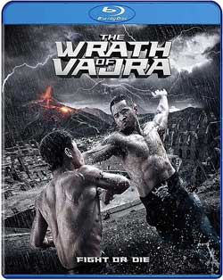 The-Wrath-of-Vajra-2013-movie-Wing-cheong-Law-cover
