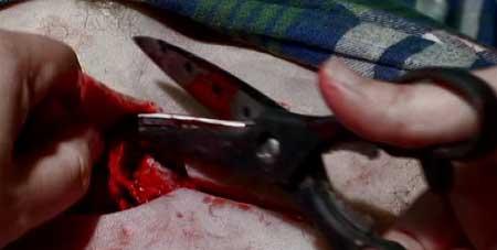 Night-of-the-Dead-Leben-Tod-2006-movie-3