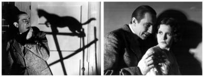 Black Cat photos 8