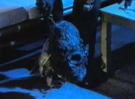 Killing-Spree-1987-movie-Tim-Ritter-8