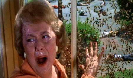 The-Swarm-Irwin-Allen-1978-movie-7