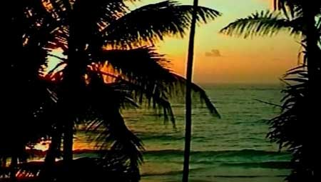 Caribbean-Sunrise-short-film-2002-Marian-Dora-(2)