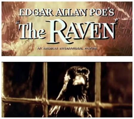 Raven photos 1