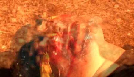 Dirty-Love-2009-movie-Patricio-Valladares-(7)