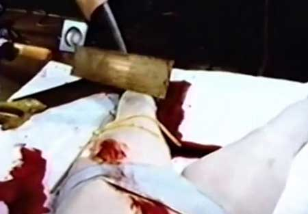 American-Guinea-Pig--Series-2-Bouquet-of-Guts-and-Gore-2014-movie-(3)