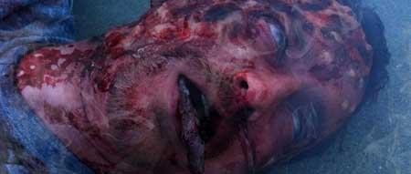 Chemical-Peel-2014-movie-Hank-Braxtan-(2)