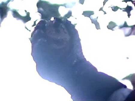 Knochenwald-2000-movie-Utz-Marius-Thomsen-(6)