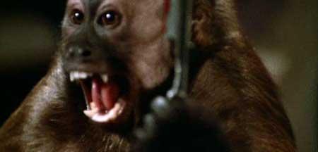 Monkey-Shines-1998-movie-George-A.-Romero-(6)