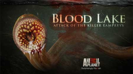 Blood-Lake-Attack-of-the-Killer-Lampreys-movie-James-Cullen-Bressack-(6)