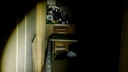 Optica-2013-movie-David-R.-Williams-(1)