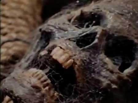 The-Meat-Eater-1979-movie--David-Burton-Morris-(4)