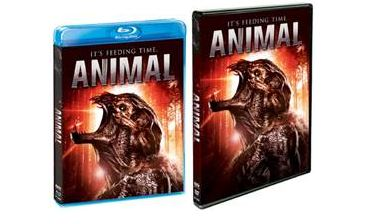 animal-shout-factory