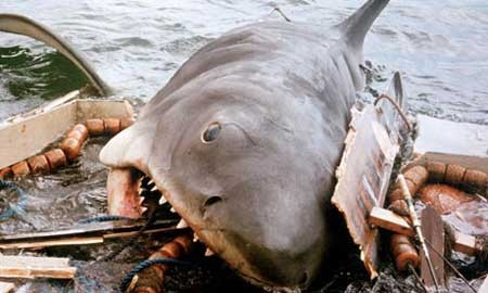 Jaws-shark