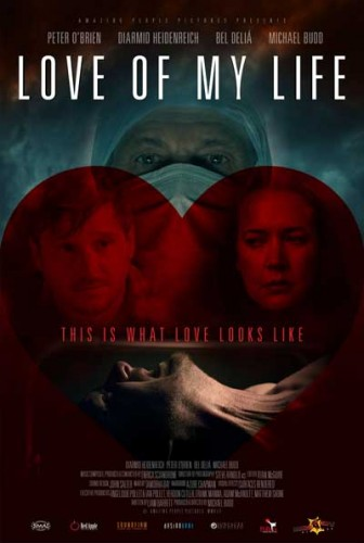 Love-Of-My-Life-2013-movie-Michael-Budd-(11)