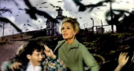 The-Birds-movie