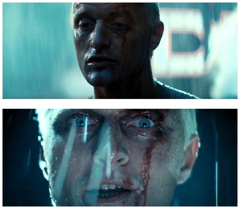 Blade Runner photo 11