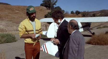 Foxy-Brown-1974-movie-Pam-Grier-(1)