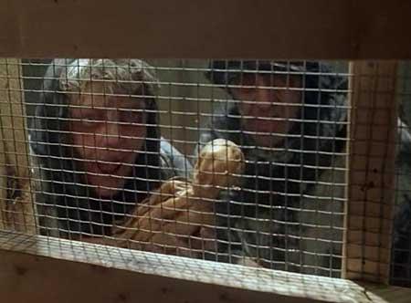 Witchery-1988-movie-Fabrizio-Laurenti-(9)