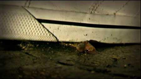 Melancholie-der-Engel-2009-movie-Marian-Dora-(7)