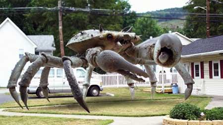Queen-Crab-2015-movie-Brett-Piper-(1)