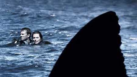 Open-Water-2003-movie-Chris-Kentis-(11)
