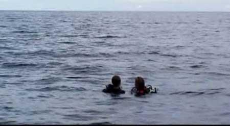 Open-Water-2003-movie-Chris-Kentis-(6)