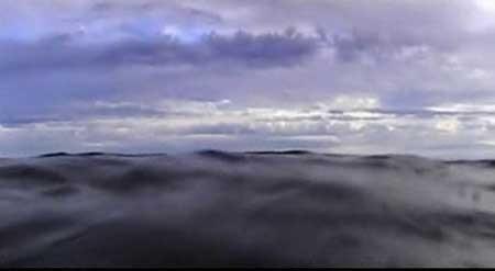 Open-Water-2003-movie-Chris-Kentis-(7)