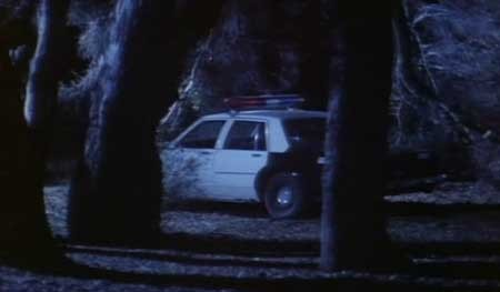 Psycho-Cop-1989-movie-Wallace-Potts-(1)