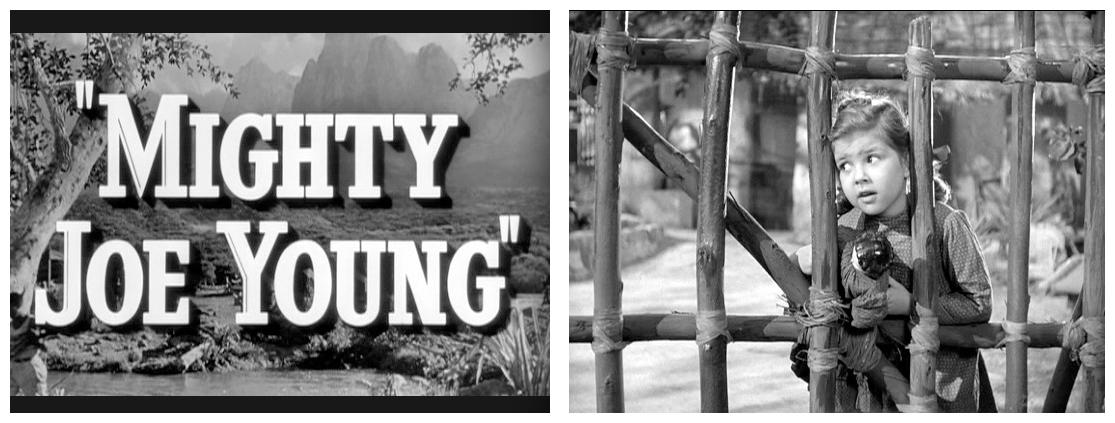 Mighty Joe Young photos 1