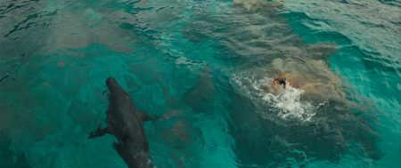 The Shallows (2016) Movie - Jaume Collet-Serra Image 6