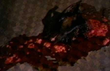 Ritual-of-Death-1990-movie--Fauzi-Mansur-(3)