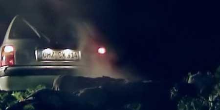 Voodoo-Curse-Legbas-Rache-2009-movie-Stefan-Svahn-(5)