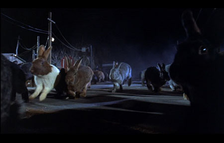 night_of_the_lepus-1972-movie-william-f-claxton-5