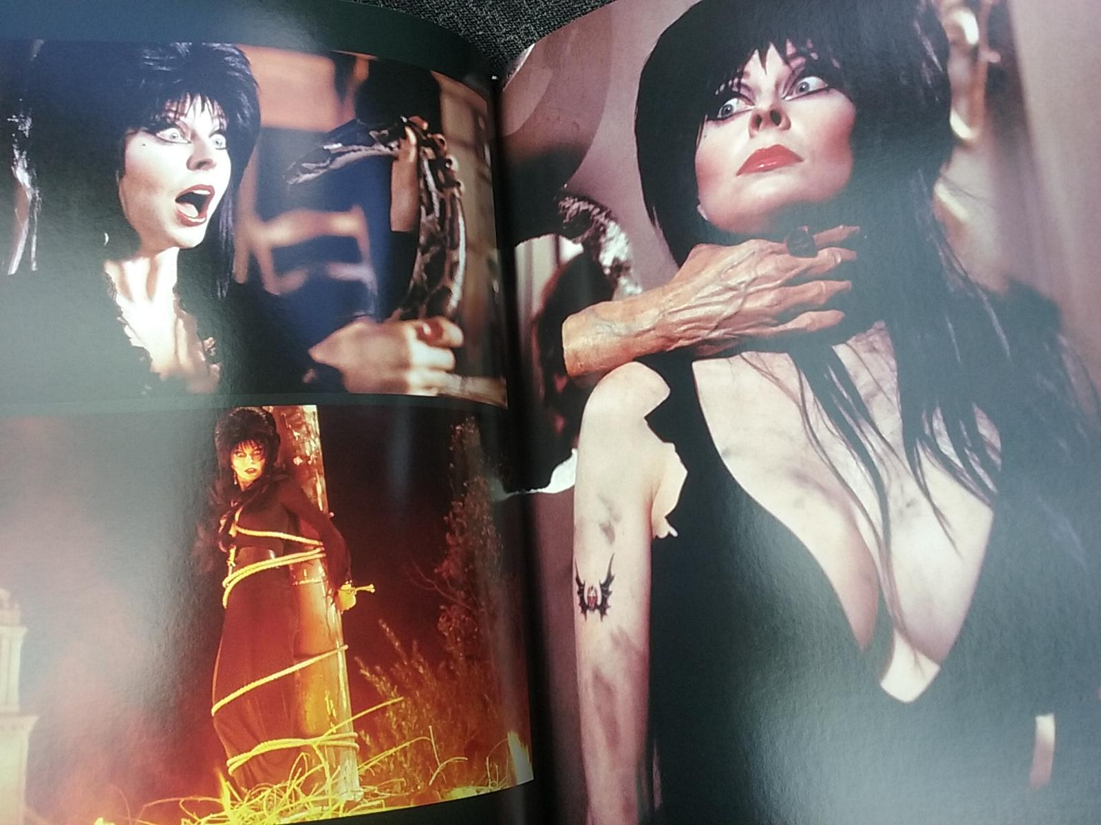 Elvira mistress of the dark scenes — pic 6