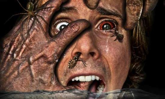Los Angeles, CA: TERROR FILMS Wants to Know – What is Your IRRATIONAL FEAR?