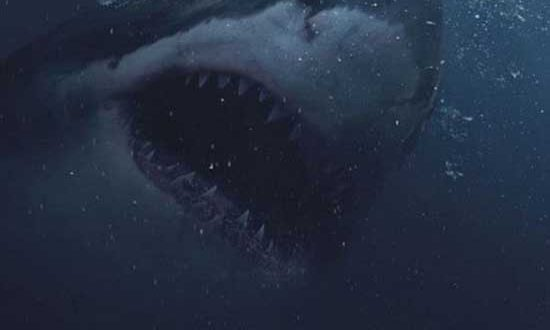 Film Review: Great White (2021) – Review 2